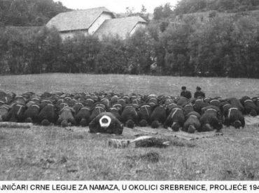 Bošnjaci u prvoj polovini XX vijeka (3)