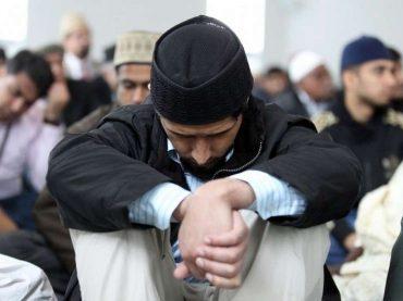 Feljton Stava: Muslimanska braća (1)