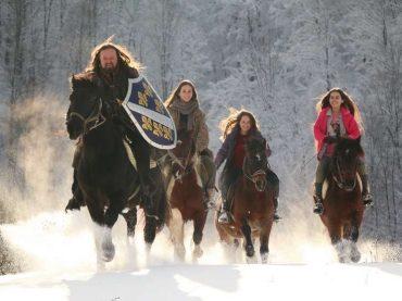 Posljednji bosanski vitez