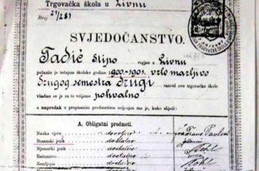 U svjedočanstvima po automatizmu pisati bosanski jezik