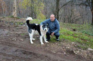 Hamed i Mehmedalija, klotjevački čuvari kanjona Drine