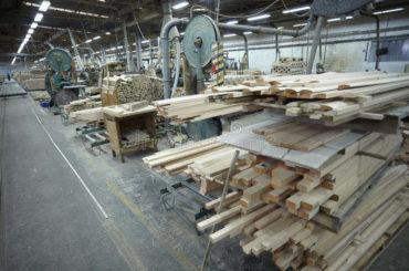 Šume su dale posao za 30 hiljada ljudi