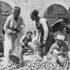 Skakavci u Krajini: Šezdeset osam godina od Cazinske bune