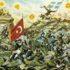 Sto pet godina od završetka balkanskih ratova: Prekretnica u bošnjačkoj politici
