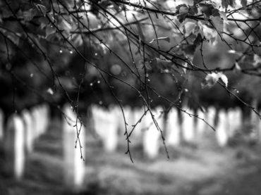 Genocid u Prijedoru: Da ne zaboraviš juli