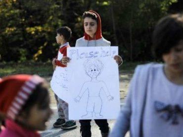 Bosanski merhamet pao na ispitu