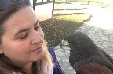 Azra Bekić, jedina sokolarka u BiH