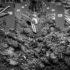 Srebrenica i genocid – najskuplje riječi u Srbiji
