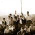 Feljton Stava-Mladi muslimani (II): Alija Izetbegović bio je striktno protiv Hitlera i saradnje muslimana s fašistima