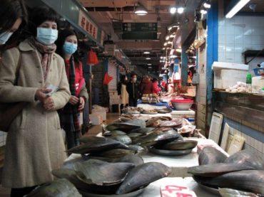 Sve dok Kinezi budu jeli divlje životinje, umiraćemo u pandemijama