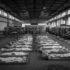 Prijedorski zločinci i kazne: Devetsto godina zatvora kao dokaz da je u Prijedoru bio genocid