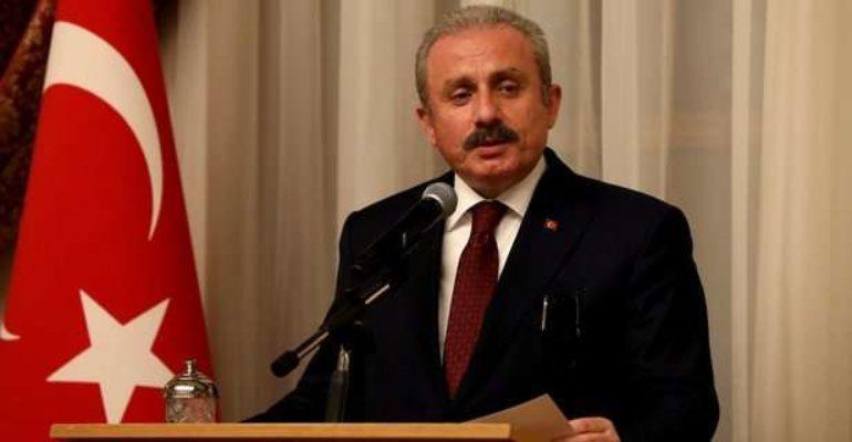 Šef turskog parlamenta Sentop: Privođenje djece u Francuskoj je razbojništvo koje čini država